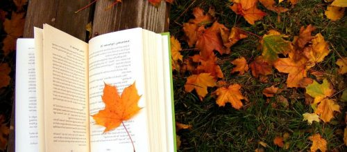 Zwalcz jesienną chandrę książką!